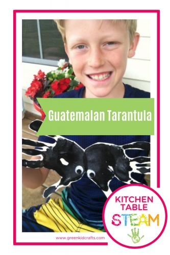 guatemalan tarantula craft for kids