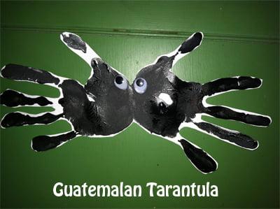 tarantulamain_edited