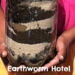 Earthworm hotel