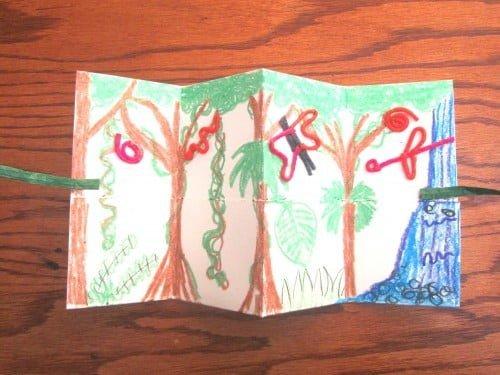 Rainforest Pocket Book