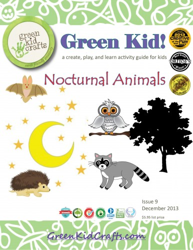 Nocturnal Animals Activity Guide
