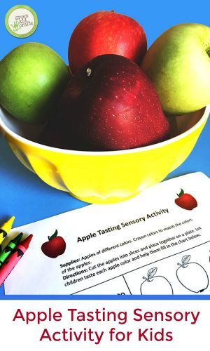 Apple tasting sensory activity for kids. Free printable chart to go with apple tasting. Fun apple activity for fall!
