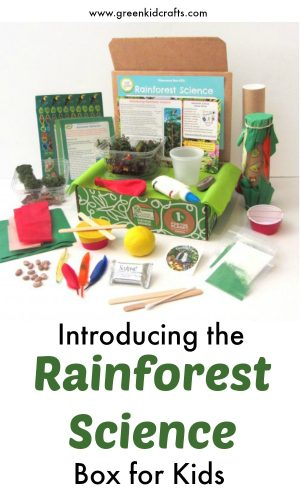 Introducing our Rainforest Discovery Box full of fun rainforest themed activities!