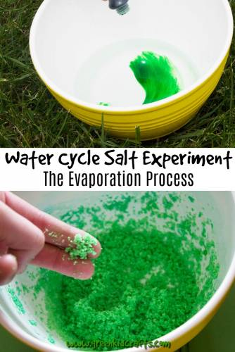 Water cycle experiment for kids. Learn about the water cycle with a salt and water activity that shows kids the result of evaporation.