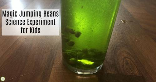 jumping beans experiment