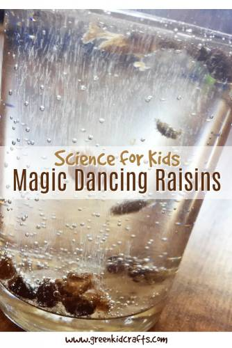 Make raisins dance in a jar with this kitchen science experiment. Explains the chemical reaction which is cool!