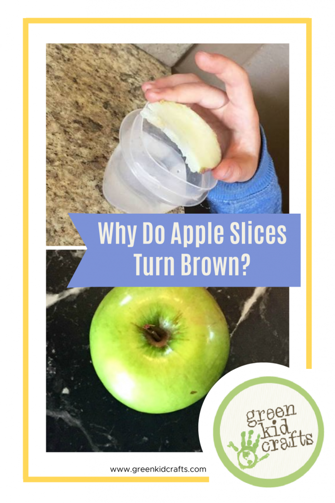 apple slices turn brown