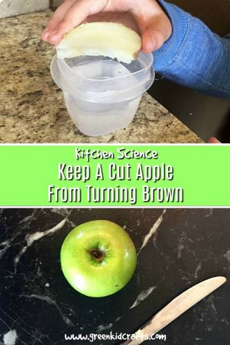 Learn why apples turn brown when they're cut and how to keep the apple slices from browning. Great kitchen science experiment for kids.