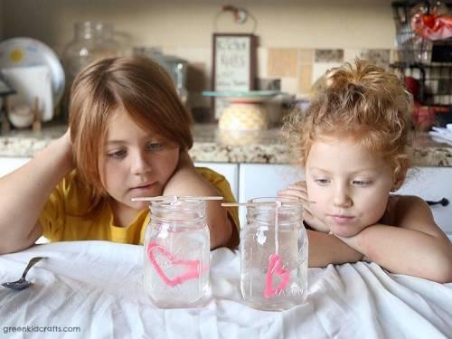 crystal growing heart science