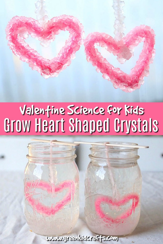 Grow heart-shaped crystals for Valentine's day! Heart science, valentine science for kids.