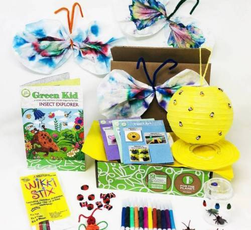 Insect Explorer Discovery Box