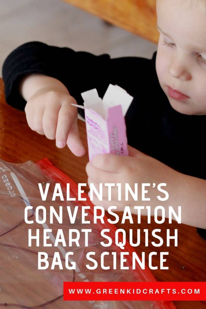 Conversation Heart Squish Bag Science - Looking for educational toys, science kits, monthly crafts for kids, monthly subscriptions for kids, a monthly craft box or kids craft subscription? Green Kid Crafts, kids craft subscription and maker of the best subscription boxes, including award-winning arts and craft subscription boxes and best monthly subscription boxes has what you're looking for!